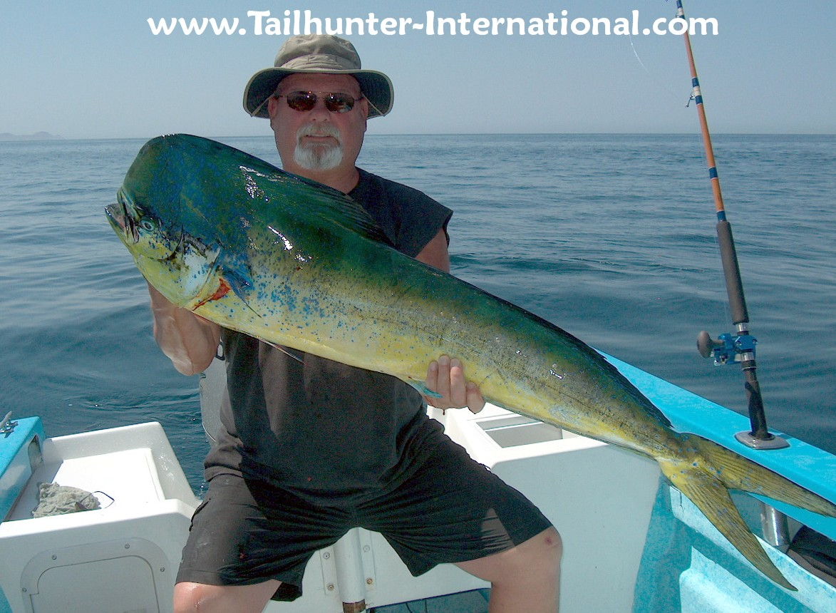June 2010 tailhunter fish report for Fish fish fish fish fish