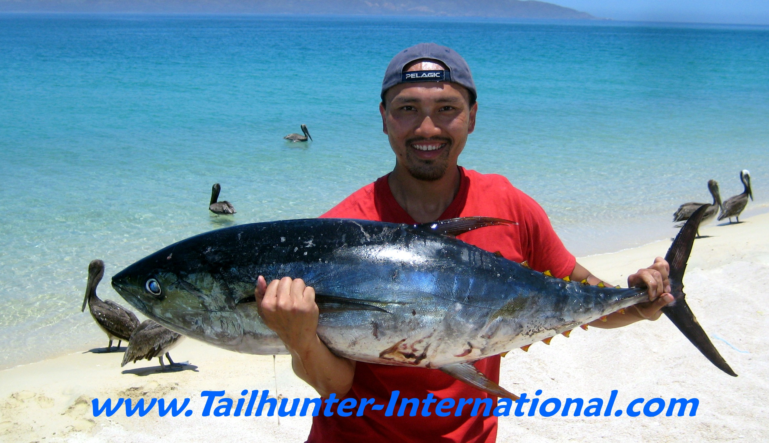 La paz las arenas fishing report for week of july 11 18 for Tuna fishing videos