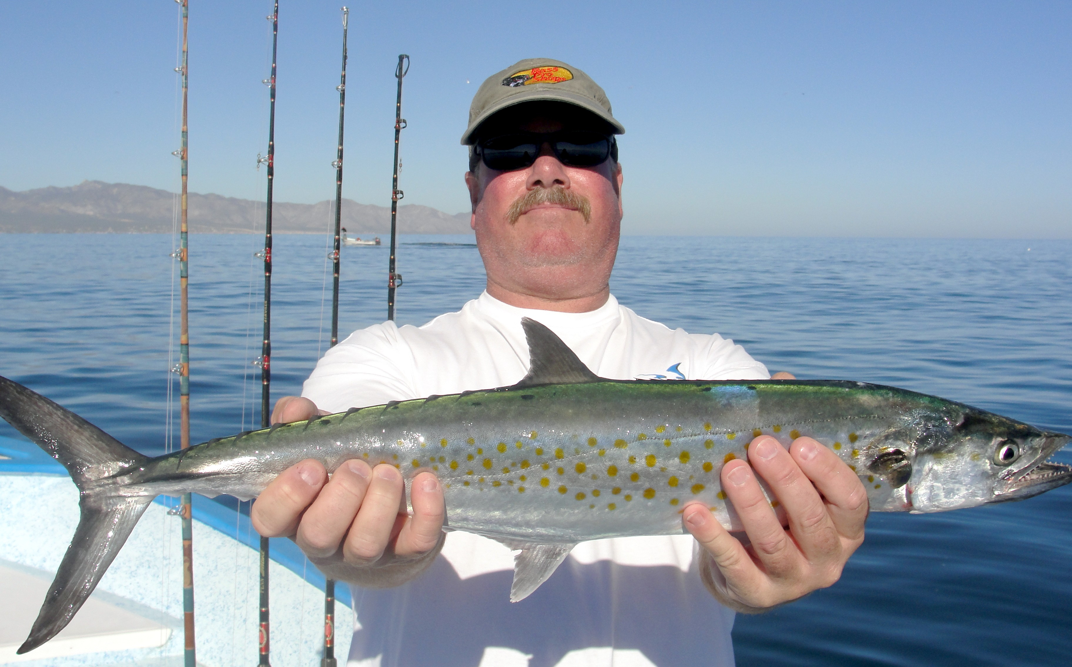La Paz Las Arenas Fishing Report From Tailhunter