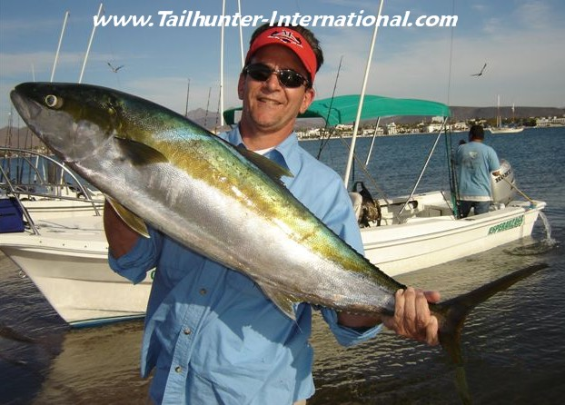 April 2011 tailhunter fish report for Yellow tail fish