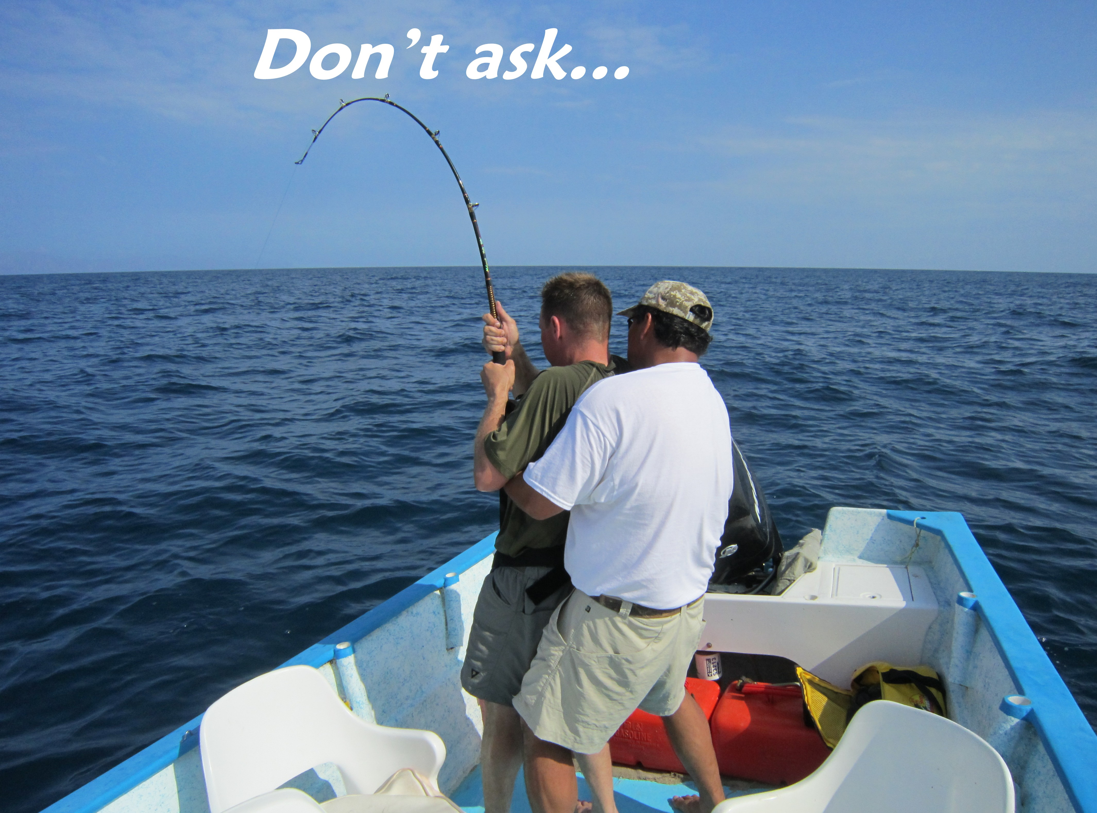 Pin funny tuna pictures strange pics freaking news fish 12 for Tuna fishing videos