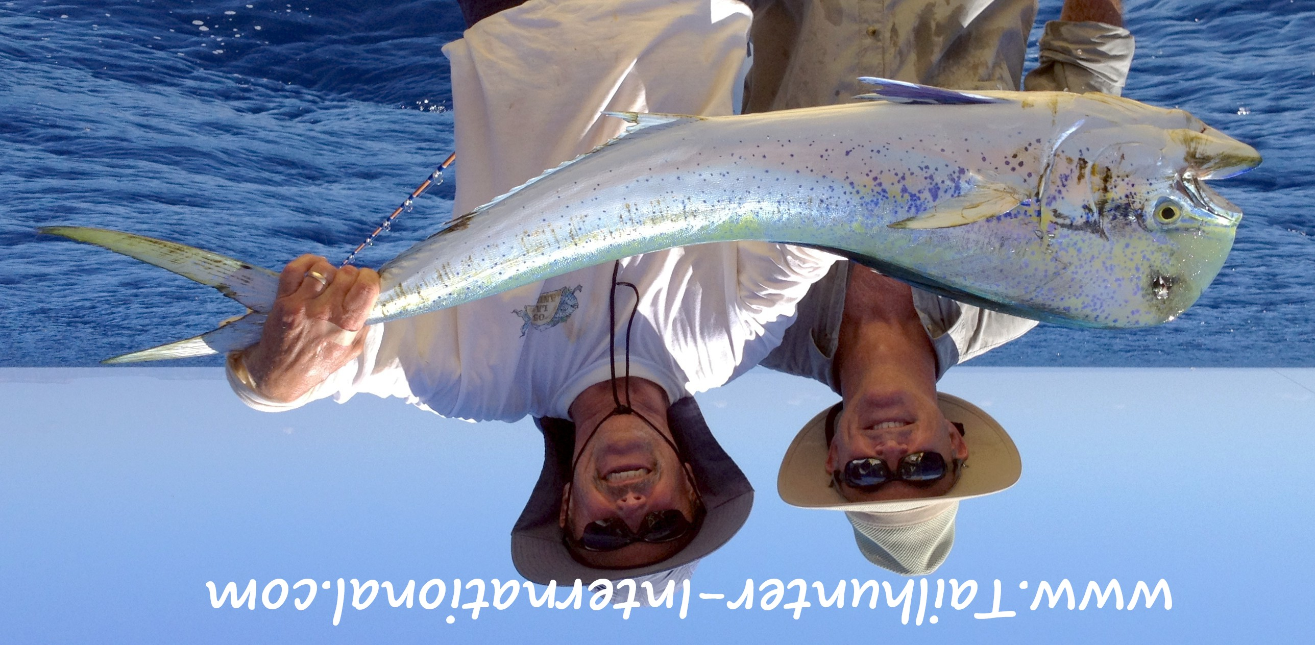La paz las arenas fishing report from tailhunter for Dana point fish report