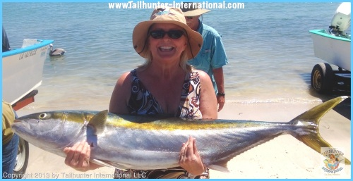 Rena hunley 3-13 yellowtail 1tags