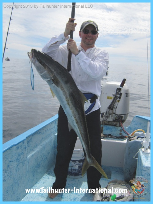 yellowtail brian oneill tags 2-13