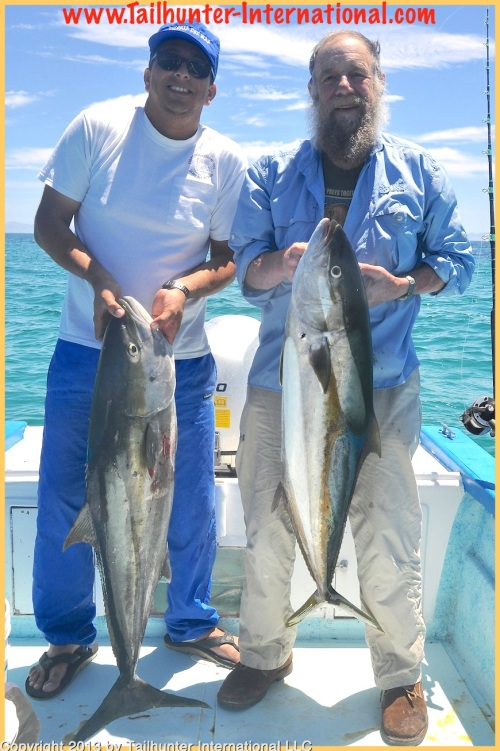 Rod brown yellowtail joel tags 4-13