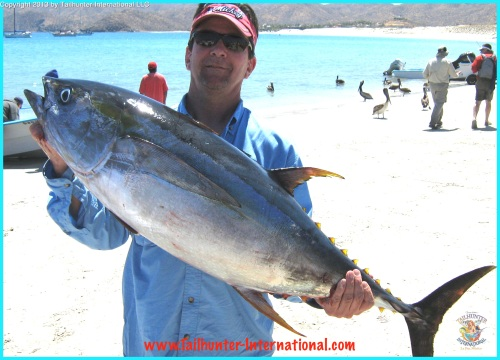 tuna ken gragg 4-13 tags