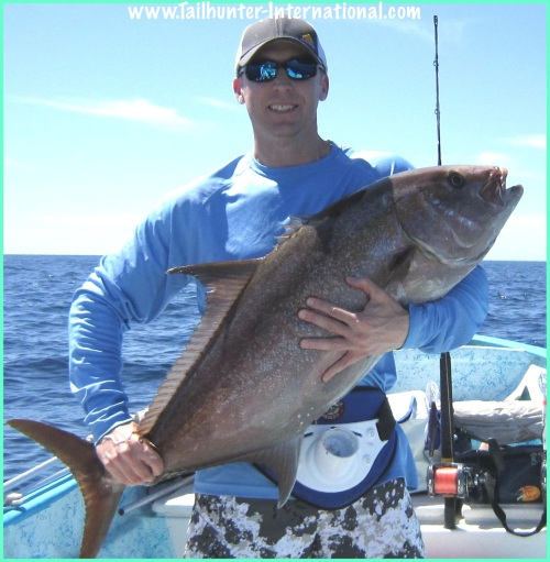 Amberjack 2-Dover 5-13-tags