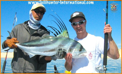 roosterfish tags 1 5-13
