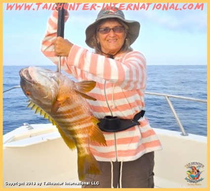 pargo donna thompson tags 6-13
