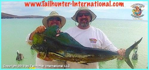 DAne Fuller dorado big 7-13 tags