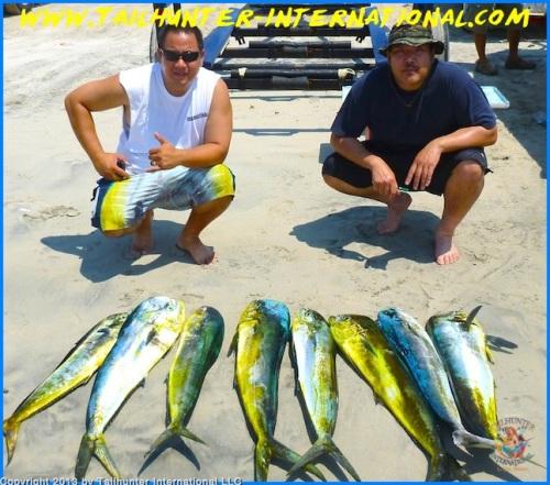 Chun Legaspi small dorado 8-13 tags