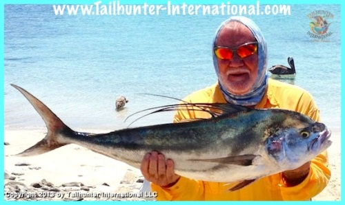 roosterfish kuhn small 9-13 tags