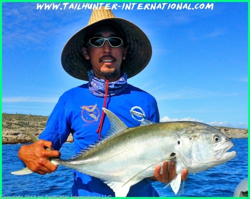 Pancho jack crevalle tags small 10-13