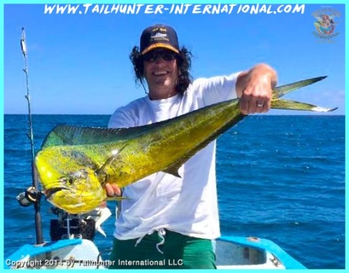 Larry Cornwall dorado tags 3-14