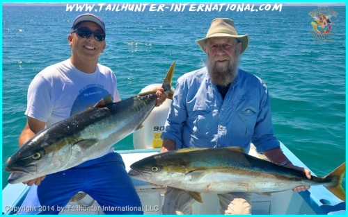 yellowtail rod brown tags 3-14
