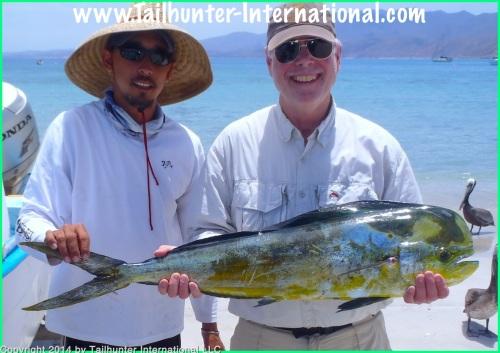 Dorado Steve Bradley small tags 4-14