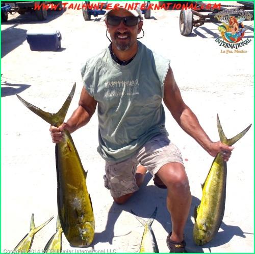 Felix Williams dorado tags small 5-14