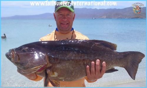 Tom Worley cabrilla grande tags smalll 4-14-proc