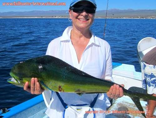 Becky Munoz tags small dorado 7-14