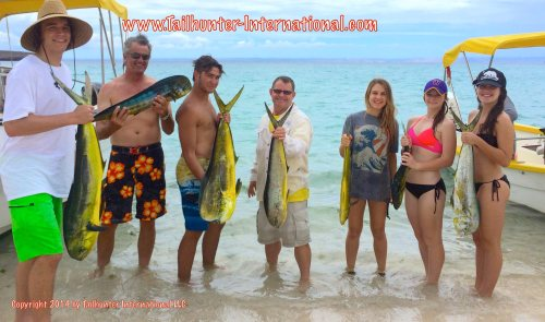 Coomber family tags small 7-14