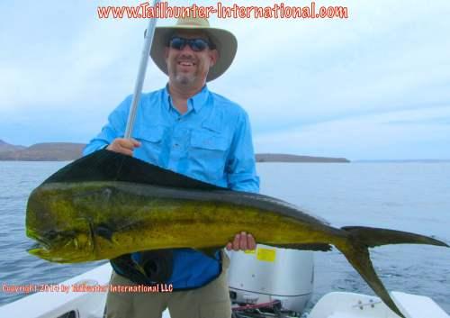 dorado phil matteson tags small 7-14