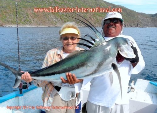 roosterfish jeanette carroll 8-14 small tags