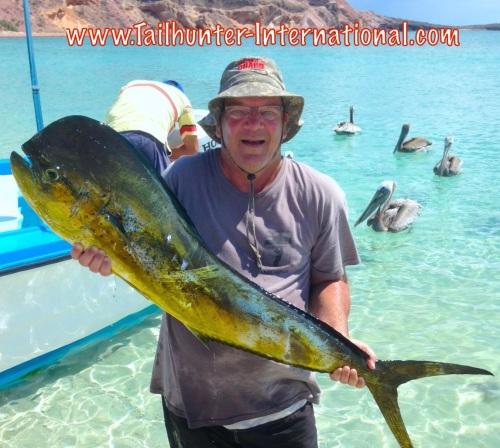 Steve Dorsey dorado 8-14 tags small