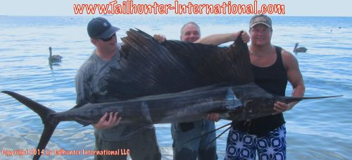 SAilfish ken cavallon 9-14 tags small