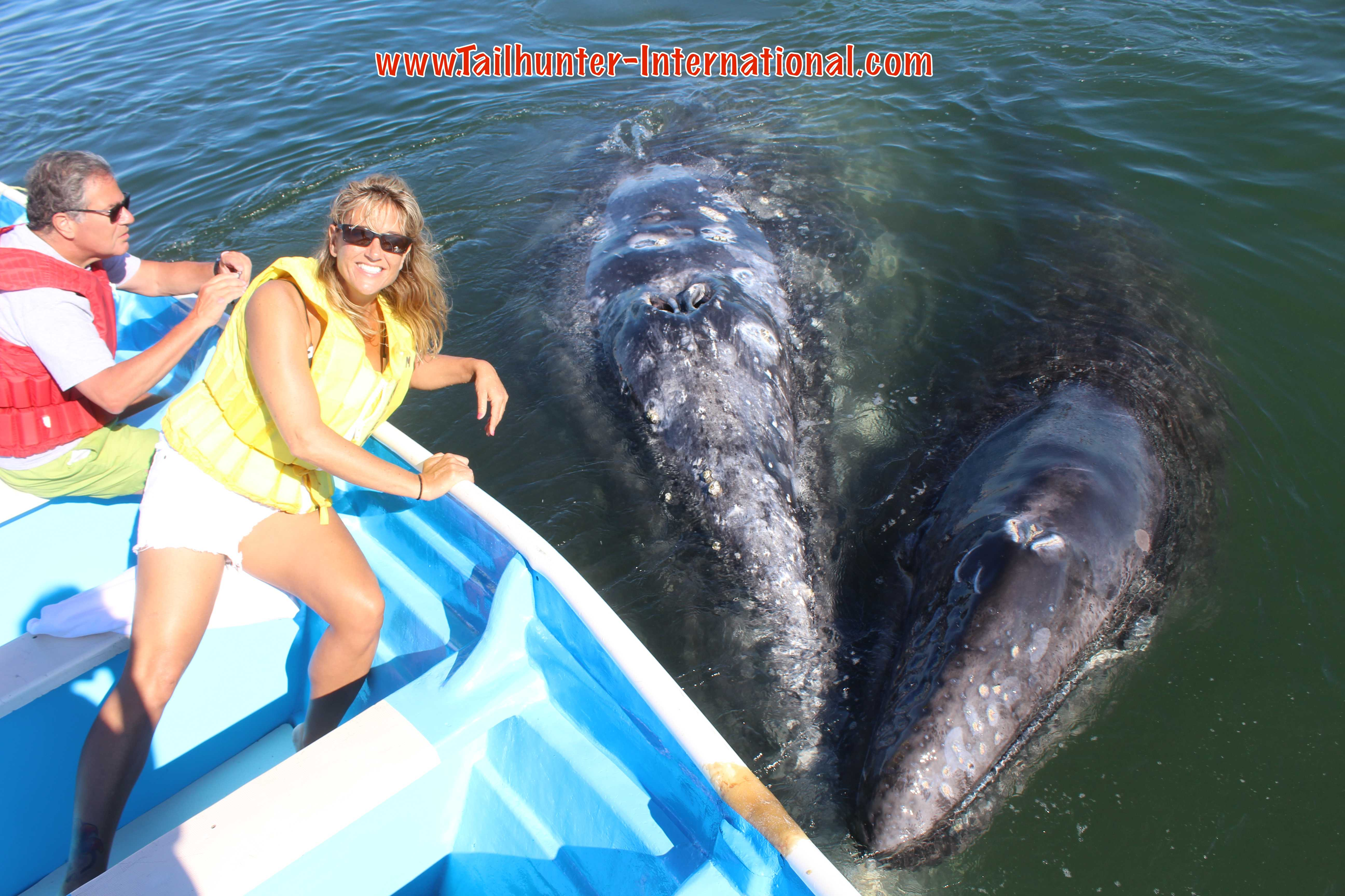 Amy kasper 1 whales for La paz fishing report