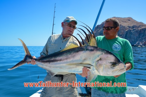 roosterfish jeff brown 3-15 tags