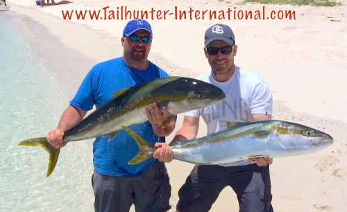tags yellowtail travis craig and brett fair 5-15