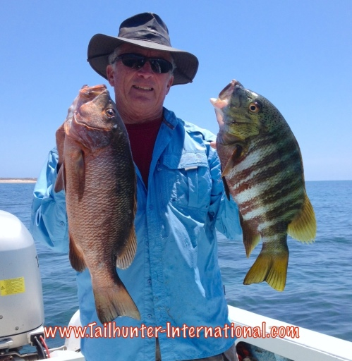 pargo Randy Forrestiere tags 6-15