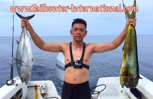 Ken Chau dorado 8-15