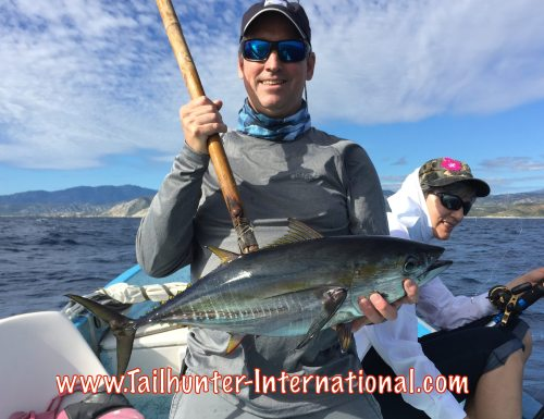 Gary Pilkington tags 9-15 tuna