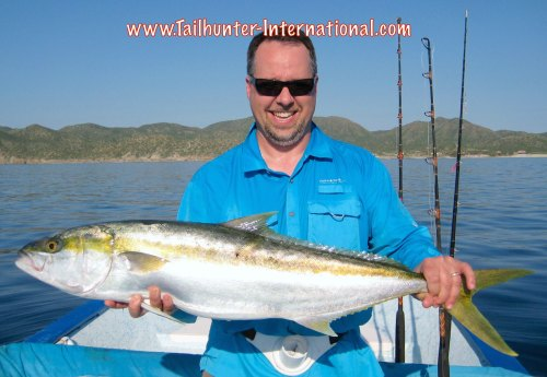 Jorge Yellowtail Dan Corcoran tags 9-15