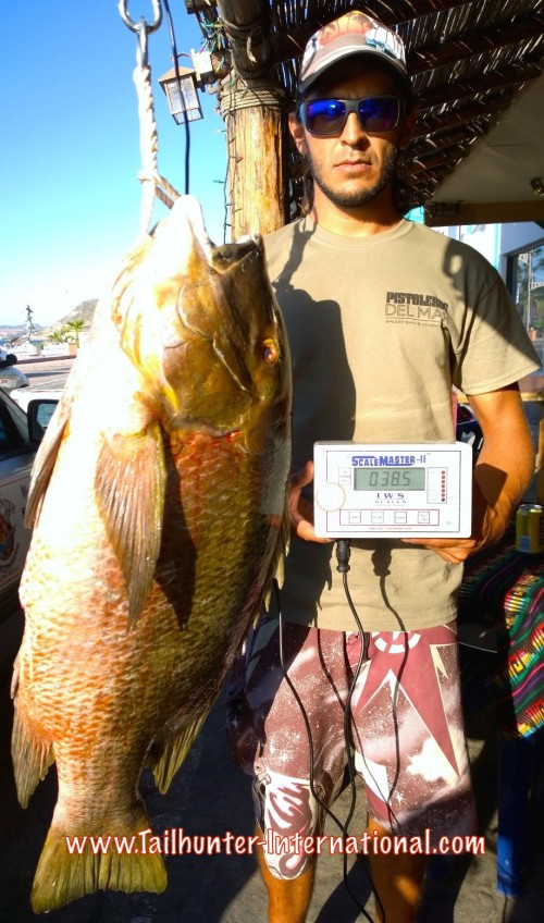 Nick Jones tags world record pargo scale tags 10-15