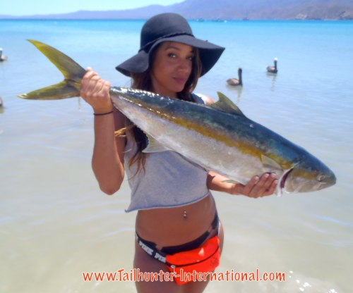 Jasmine Bonsack from Washington first time fishing gets a nice yellowtail fishing out've Bahia de Los Muertos with Tailhunter.