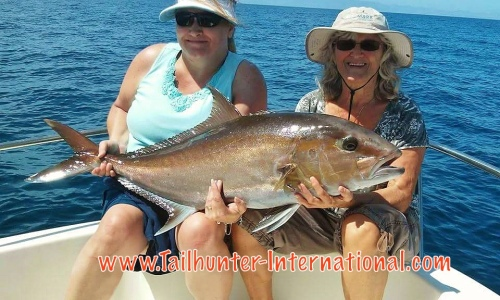 amberjack donna thompson dana hohn texas 5-16 tags
