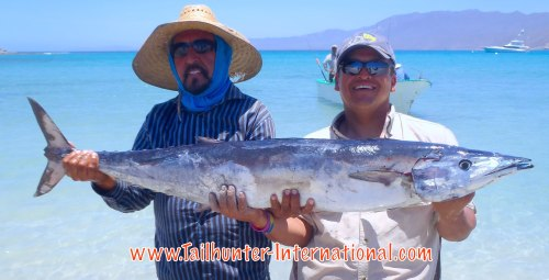 Happy Anniversary wahoo for Diego Jimenez who came to fish with Tailhunters in La Paz for his 25th wedding anniversary from Loveland, Colorado. He and his wife come every year, but he and never gotten a wahoo until this big 'hoo came along. He gets photo help from Captain Jorge of the Tailhunter fleet on the beach at Bahia de los Muertos.