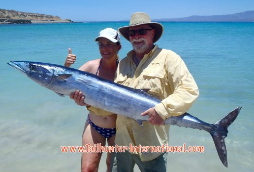 Robby and his wife, Bobette Nixon came down for the first time to La Paz from the Sacramento CA area and he wanted a wahoo and a rooster! He got both! The rooster was released, but he shows off the big wahoo on the beach at Bahia de los Muertos.