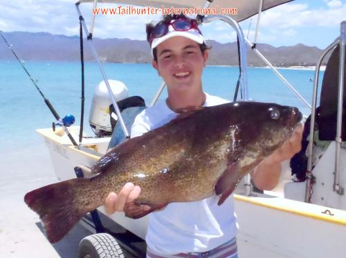 Slug of a trophy cabrilla (seabass) for young Captain Randolph out've Las Arenas/ Bahia de los Muertos!