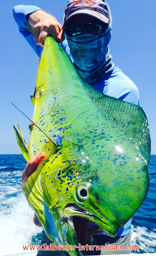 Here's a guy who knows how to pose with a fish! Chad Stachowicz is the man behind the mask and holding one of the nicer dorado from the week! He also just got married a few days ago! Fishing honeymoon! Erin's photo is below!