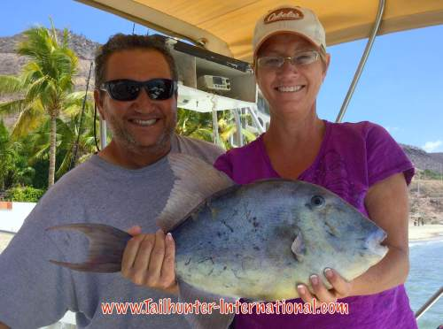 triggerfish Lisa Gibson Rogelio 8-16 tags