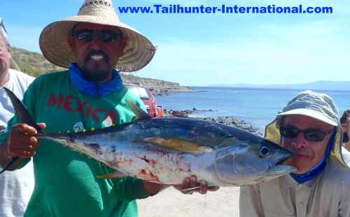 scott-evans-tags-jorge-10-16-tuna