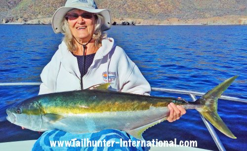 donna-yellowtail-tags-2-17