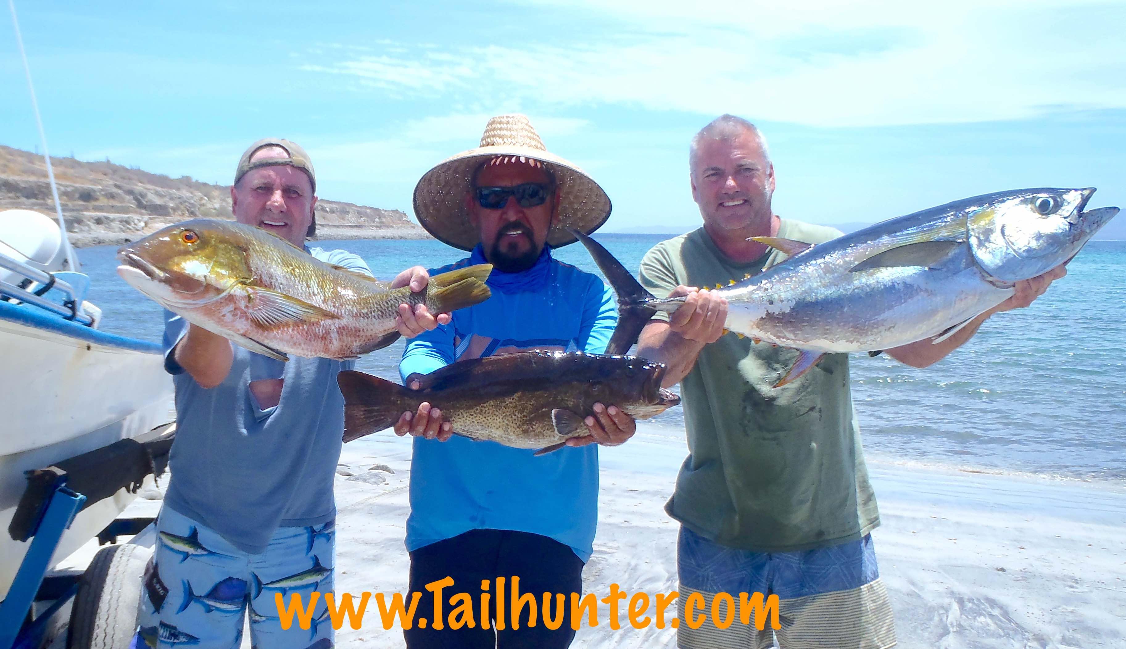 Tailhunter Fish Report La Paz Baja California Sur Mexico