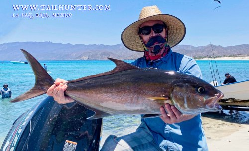 Amberjack RS TAGS Nick Gatelein 6-19