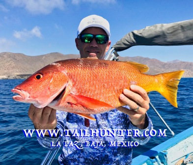 pargo Dave Lester TAGS 6-19